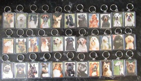 KEY RINGS QUALITY ACRYLIC DOUBLE SIDED PHOTO KEY RINGS 33 BREEDS